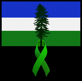 evergreenribbondougflag5x5.jpg